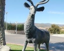 deer rut Jimena de la Frontera